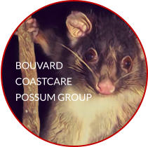 BOUVARD COASTCARE POSSUM GROUP